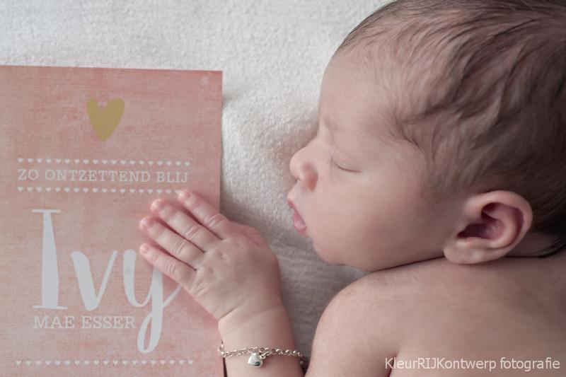 newborn fotografie castricum
