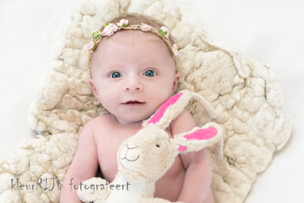 Babyfotografie | Isabeau 6 weken oud | Noord-Holland