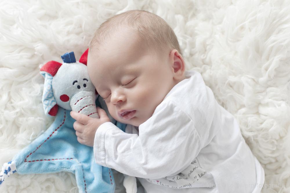 newbornfotoshoot amstelveen