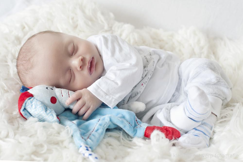 newborn fotoshoot amstelveen