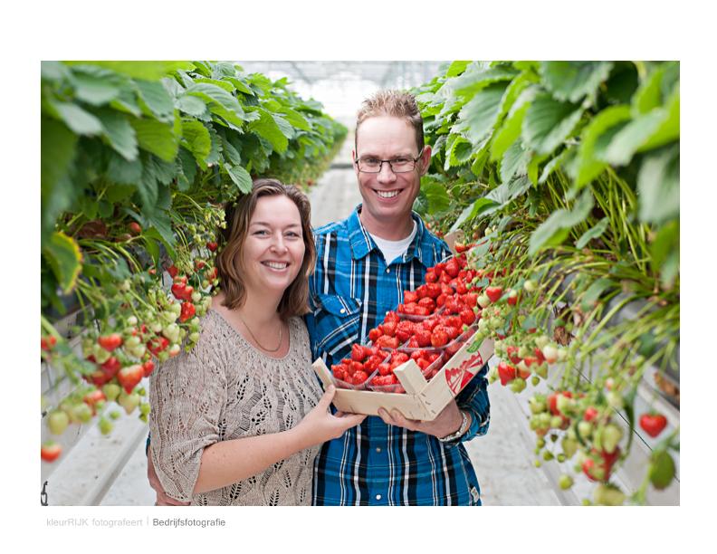 bedrijfsreportage groente en tuin zwaag