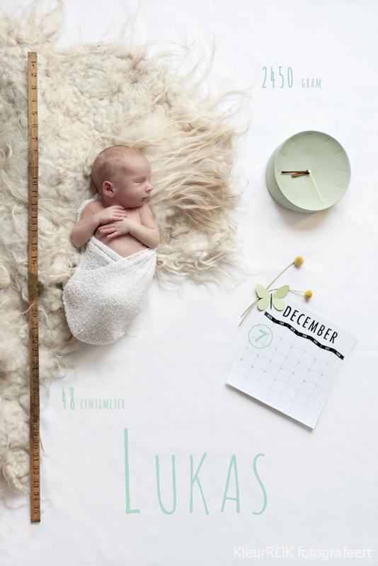 Zwanger & Newborn fotoshoot