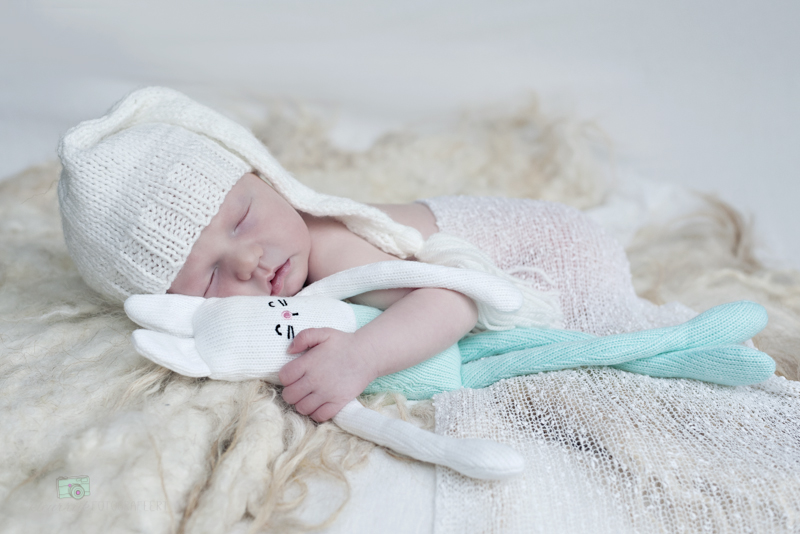 newbornshoot noord-holland