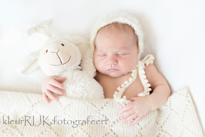new born fotografie haarlem
