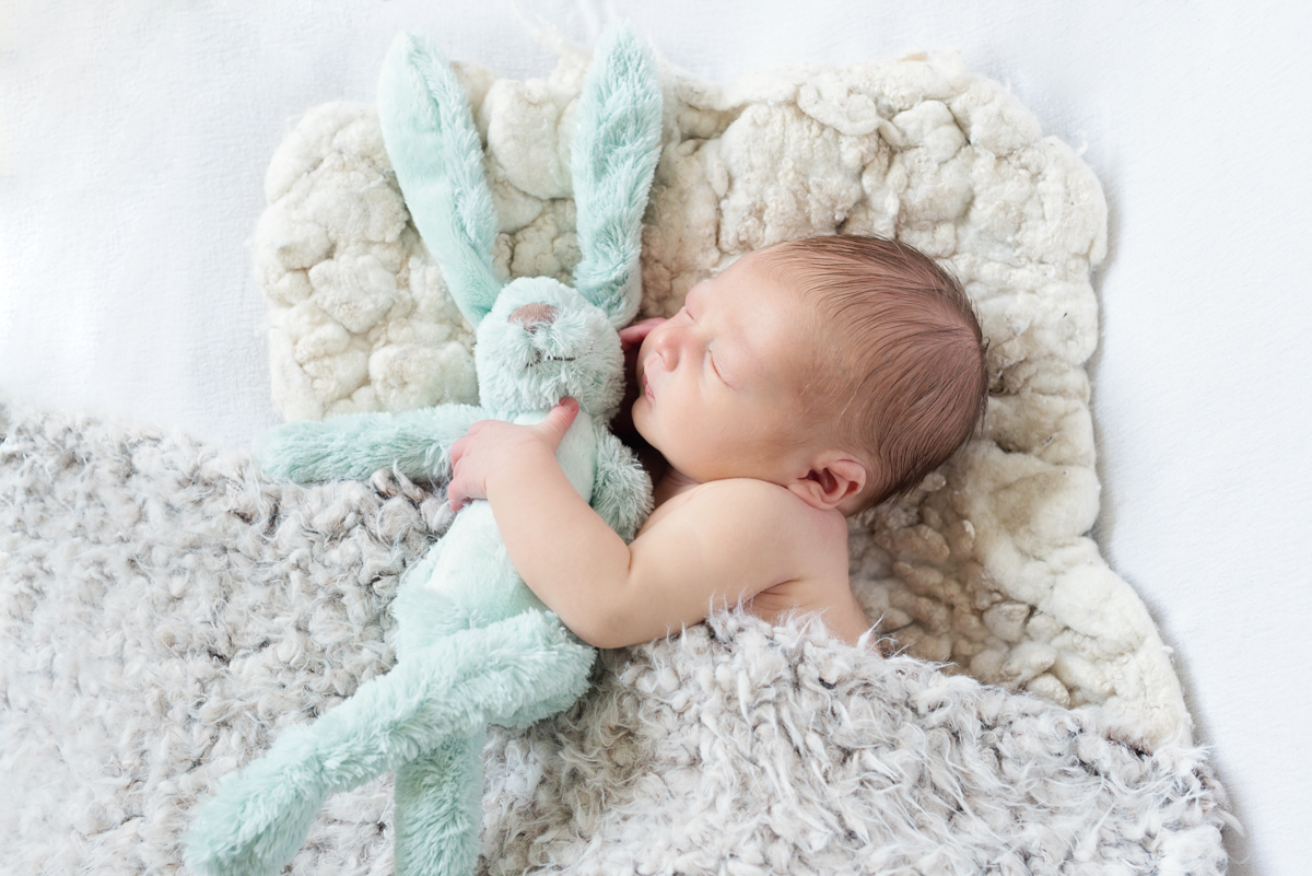 newborn fotografie zaandam