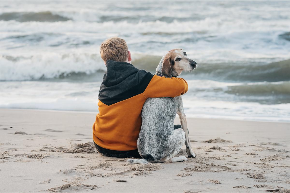 hond & gezin strandshoot